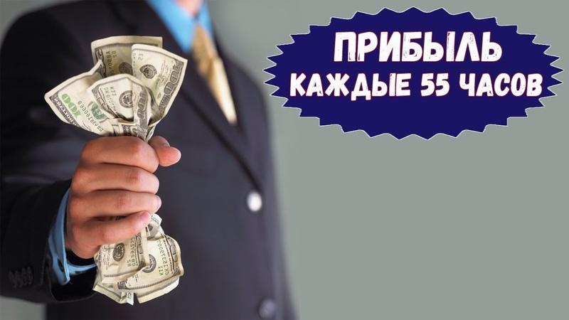 HourProfit - инвестиционный проект / 55% за 55 часов / Как заработать в интернете