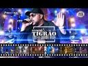 BONDE DO TIGRÃO - DVD O BAILE TODO (COMPLETO)