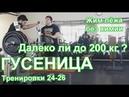 ГУСЕНИЦА по Суровецкому А.Е. Видео: 10 Далеко ли до 200 кг?