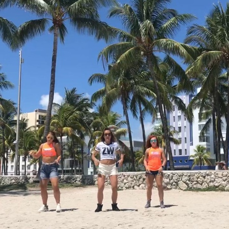 "Daria Shmeleva ZJ™ 🐝 on Instagram: ""🌴 Move to Miami 🌴 🐝 With my partners in crime @katy_yakimova🐱 @zumbaredfox🦊 . . . zumba zumbachoreo zumbafr..."