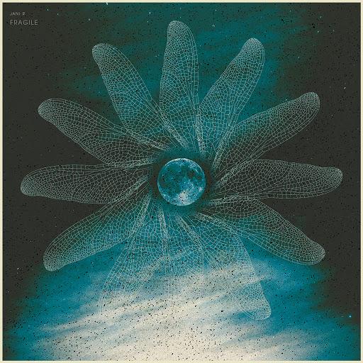 Jani R альбом Fragile
