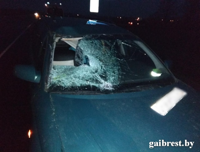 В Пинском районе водитель на «Опель-Омега» сбил женщину на дороге