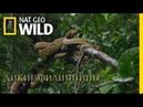Nat Geo Wild Дикие Филиппины Зачарованные острова 2018 1080р