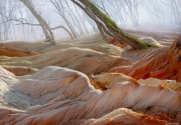 Румынский фотохудожник Эдриан Борда, создает фантастические пейзажи, совмещая элементы разных снимков. В своих работах он выдвигает на первый план красоту и блеск, найденный в мире