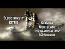 Bloodthirsty Kittie Stamina Nightblade Gameplay 12 ESO Murkmire