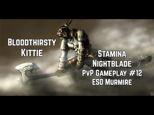 Bloodthirsty Kittie | Stamina Nightblade Gameplay 12 | ESO Murkmire