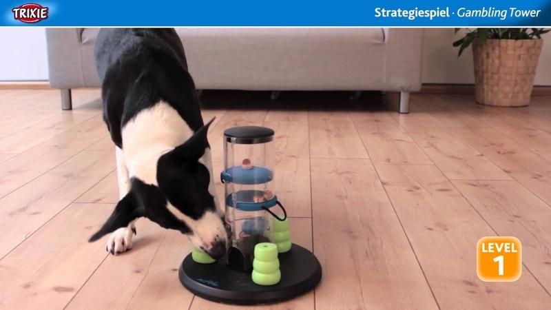 TRIXIE Heimtierbedarf Dog Activity Strategiespiel Gambling Tower