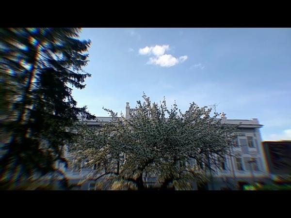 Pessimistic Sequence, Blue Sky Trees (334)