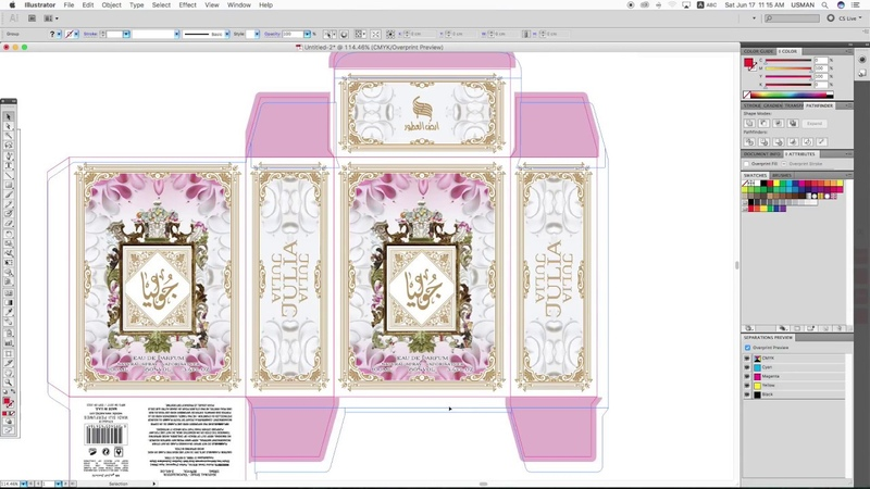 How to Make 3D Mockup Online - Adobe Illustrator - Packaging Design - Advance