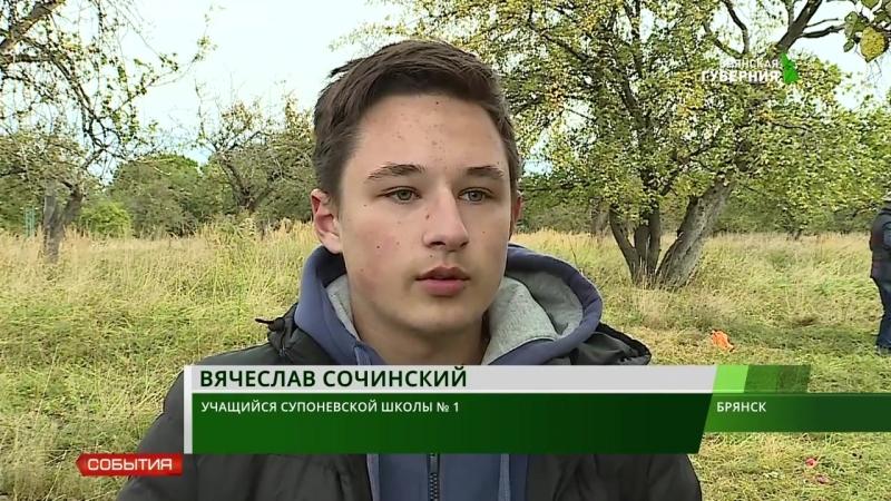Новые яблони в Саду на холме у Свенского монастыря, 2018