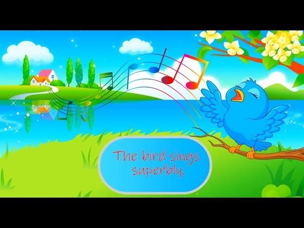 კრებული 'ყველა ვიდეო ზედიზედ' ინგლისური ბ