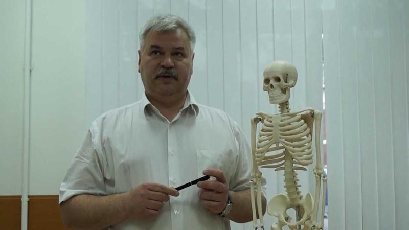 БОЛИ В РУКЕ (Болит рука? Невролог подробно разъясняет о причинах боли в руке)