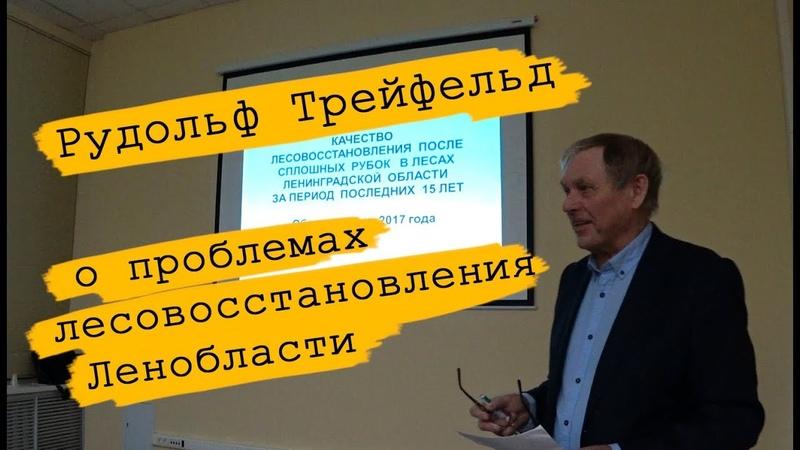 Рудольф Трейфельд о проблемах лесовосстановления в Ленинградской области