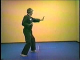 Kenpo Karate Long Form 4 - Jim Mitchell