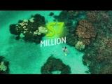 S7 Priority Million Miles Show