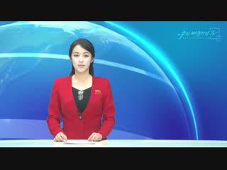 《정규직전환을 왜 고용세습으로 매도하는가》 -남조선인터네트신문에 실린 글- 외 1건