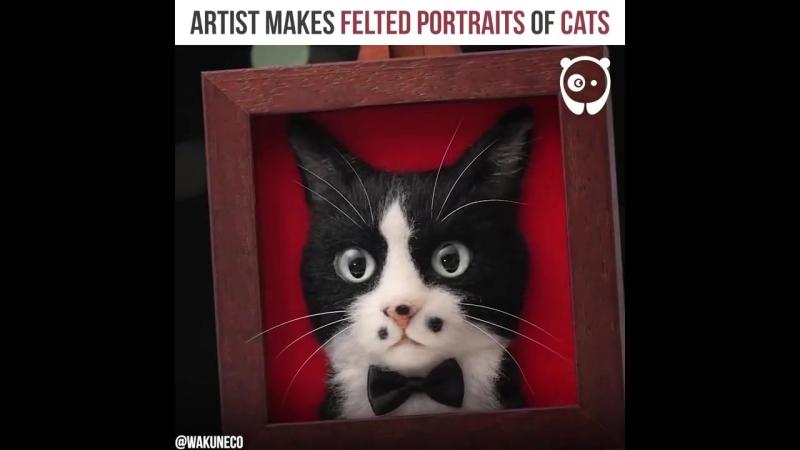 Реалистичные кошачьи мордочки
