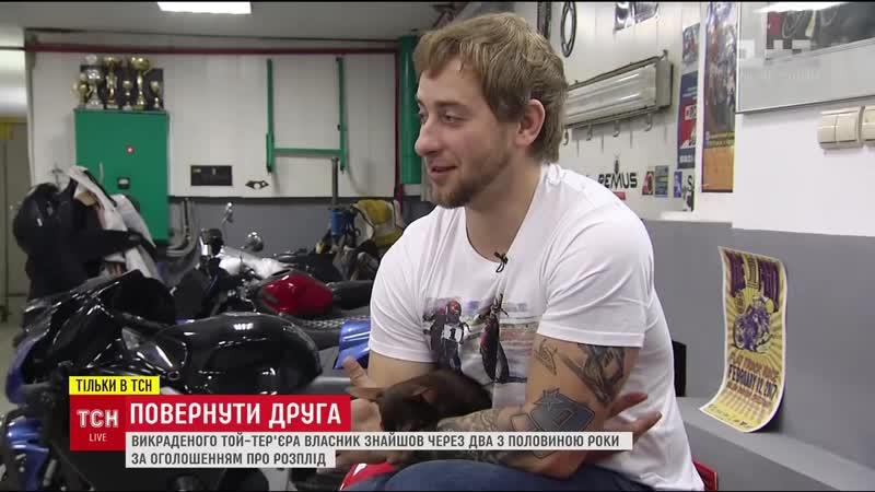У Києві власник викраденого той-терєра знайшов собаку через більше двох років пошуків