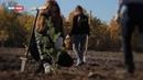 Пока на Украине рубят - в ЛНР высаживают. Пасечник заложил новый лес под Луганском