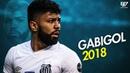 Gabriel Barbosa 'Gabigol' ● Magic Skills ● 2018  HD 