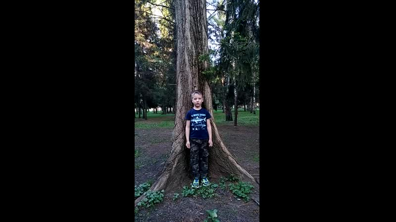 № 19 Звягин Денис 5 9 лет отрывок У Лукоморья дуб зеленый