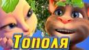 🍂 Тополя 🍂 💝 Лучшая Дворовая песня 💝 от Тома в 🎸 Современной Обработке 🎸