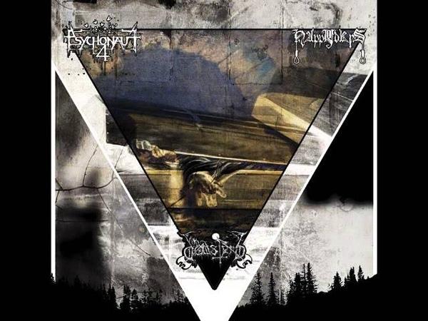 Psychonaut 4 - My despair can't be explained (2013)