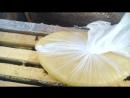 Зимняя подкормка пчёл Канди для пчел