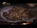《广西故事》 20160820 油茶飘香