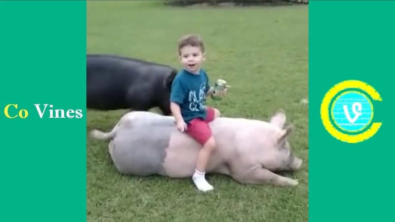 Try Not To Laugh Watching Funny Kids Fails Compilation December 2017 5 - Co Vines✔