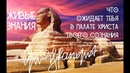 Сфинкс Живые знания Ускоренная эволюция Что ожидает тебя в палате Христа твоего сознания