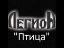 ЛегиоН - Птица (guitar cover)