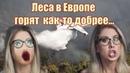 В России по определению не может происходить ничего хорошего