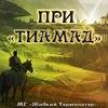 """ПРИ """"Тиамад 2736"""""""