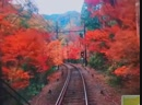 Visit Japan AU NZ в Instagram If youre visiting Kyoto this autumn and want to take in the spectacular colourful scenery make
