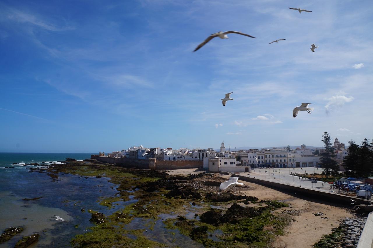 Сказочный форт Эс-Сувейры в Марокко