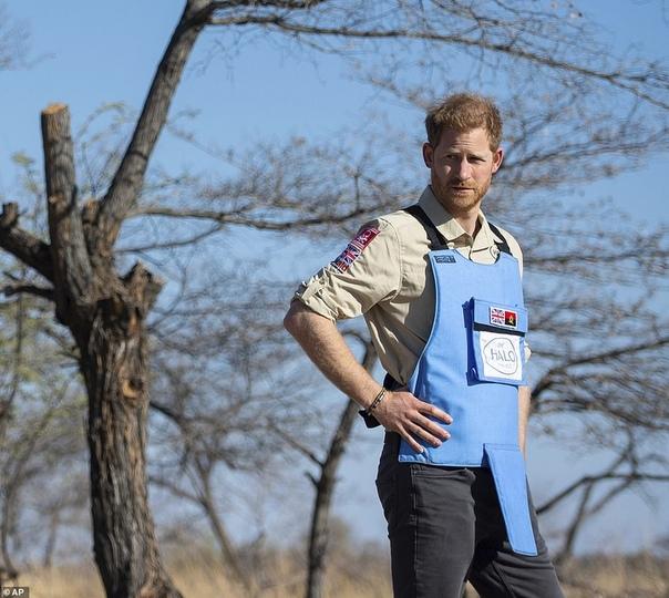 Принц Гарри прошелся по следам принцессы Дианы на минном поле в Анголе