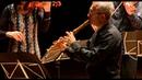 Francesco Mancini, Concerto XIV in sol minore per flauto, 2vl, vla e b.c