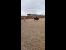 Мы когда-то падали с лошади, было больно... Много слёз и удивления, но мы не сдаёмся, снова приходим на тренировки, садимся в се