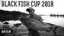 Black Fish Cup 2018: Фильм — Спортивная ловля карпа — Карпфишинг