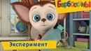 Эксперимент 🔬 Барбоскины 🔍 Сборник мультфильмов 2019