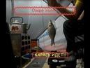 Зимняя рыбалка с ночёвкой! Ловля карася на озере Уелги