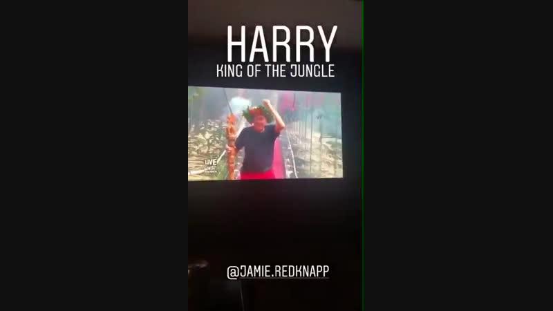 UpdateNiall via instagram story watching ImACelebFinal - s