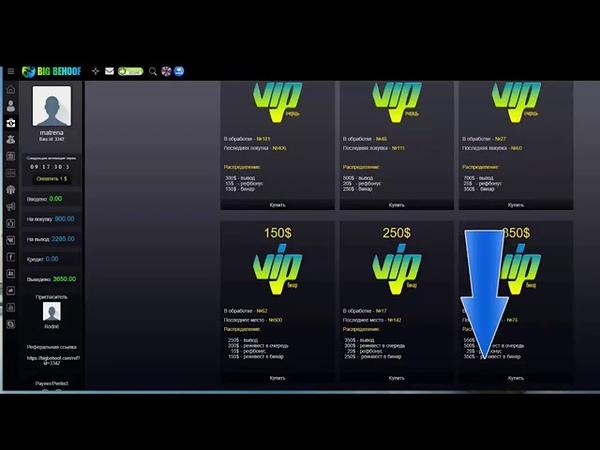 Проект BIG BEHOOF Старт модуля VIP