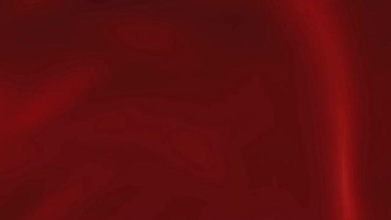 Хозяйственный пылесос ЗУБР для сухой и влажной уборки арт.ПУ-15-1200 М1