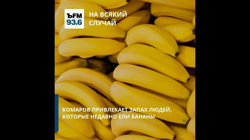 ЪFM. На всякий случай. Комар и банан