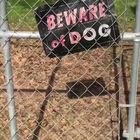 Beware of OPTIMIST dog
