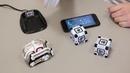 Робот Anki Cozmo - Живой робот! Самый полный обзор на Русском!