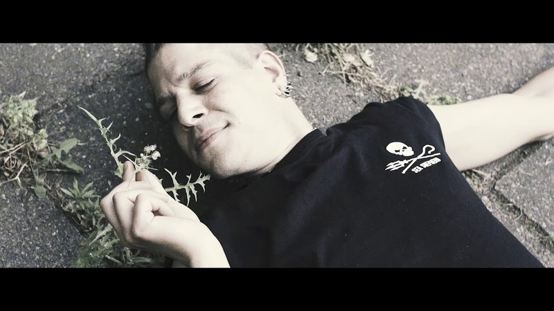 ALARMSIGNAL - Labyrinthe aus Beton - Aggressive Punk Produktionen Antikörper Export