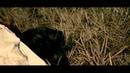 THREE LIGHTS DOWN KINGS 「BRAIN WASH」 Music Video